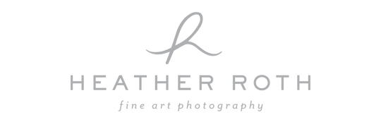 Heather Roth Fine Art Photography logo